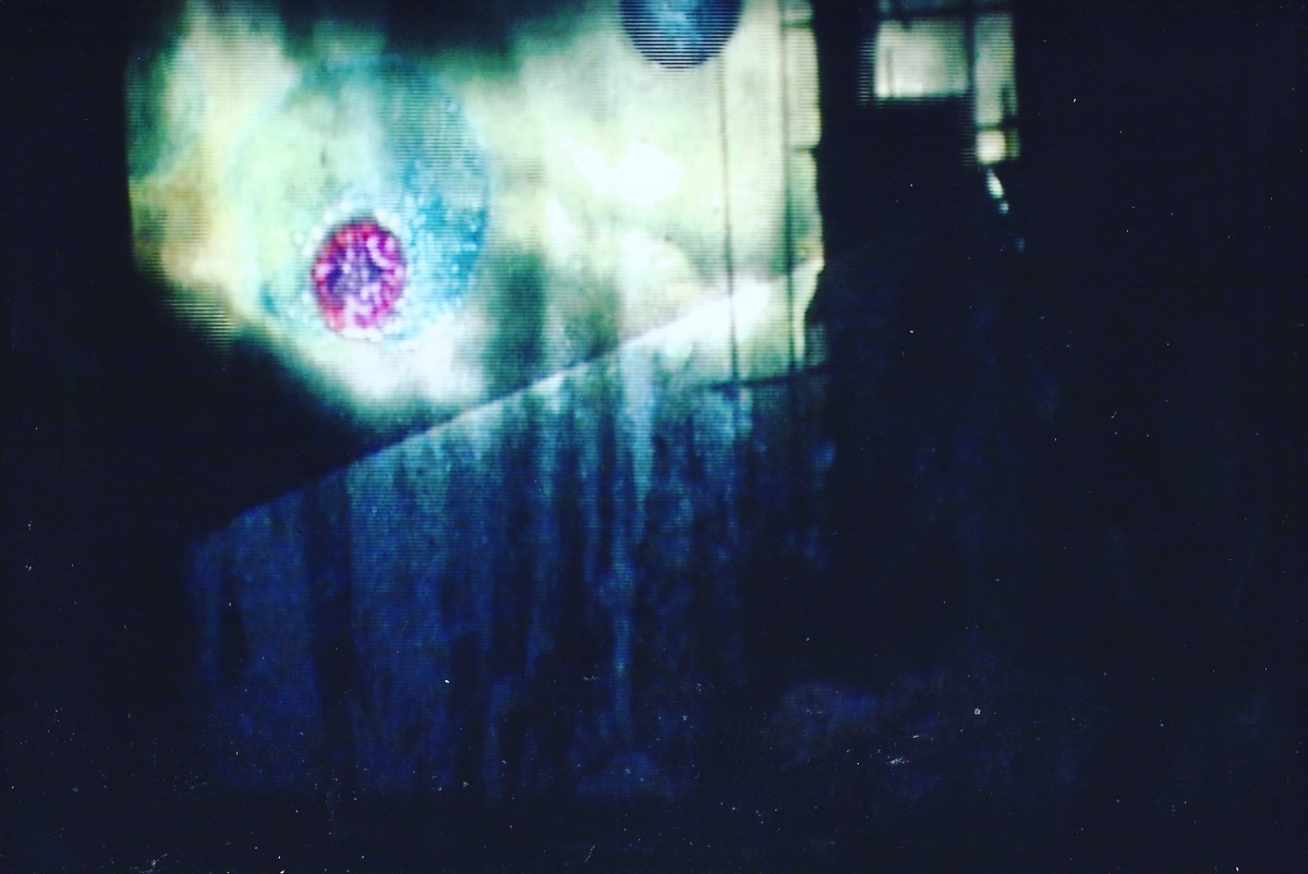 Picture shows the vague interior of a room in semi-darkness with shadows on the wall